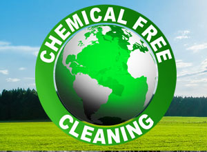 eco-friendly-green-house-and-office-cleaning-dublin-bni